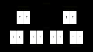 Таблица 5 ген куцего хвоста